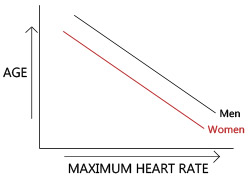 Age, Gender and Heart Rate