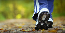 There have been studies that show an increase in male health among males  who walk at least 6,000 steps a day. That's a pretty good indicator that  there are ...